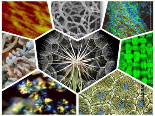 聚合物降解有哪几种类型